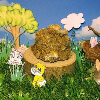 ein Keks aus Löwenzahn umhüllt mit Löwenzahnblüten