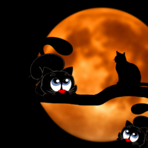 POSTKARTE Katzen vorm Mond