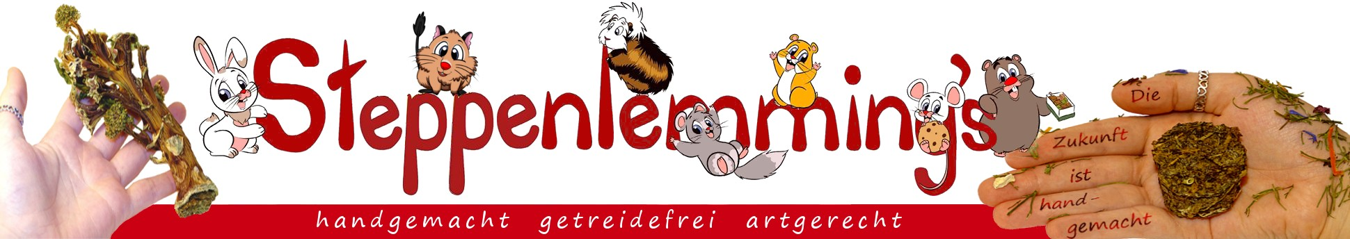 aktuelles Logo Schriftzug